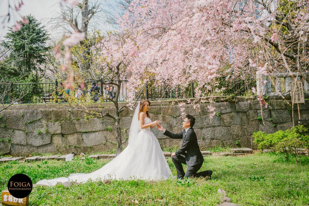 「第十一候」桜始開